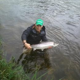 River Tweed May 2014