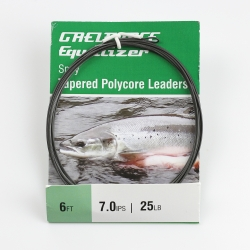 Equalizer Sinking Polycore Leaders 6ft 7 ips